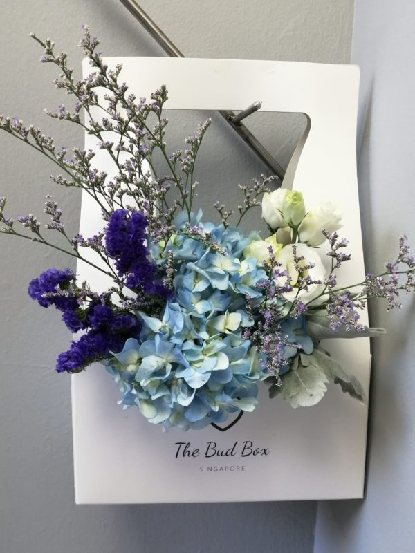 Bud Box for 6th June -Hydrangea Bloom in a Box