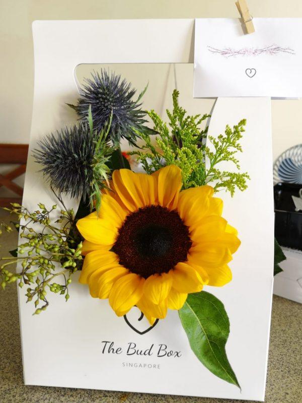Sunflower Bloombox
