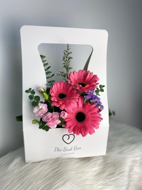 Gerbera Flower Bud Box
