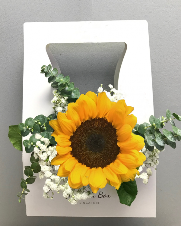 Sunflower & Baby Breath Bud Box