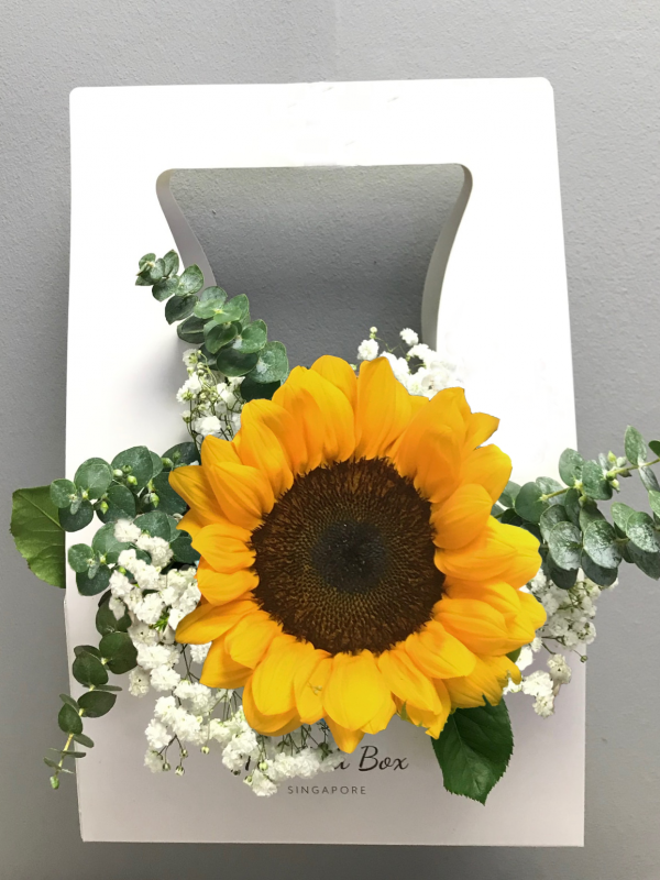 Sunflower & Baby Breath Bud Box